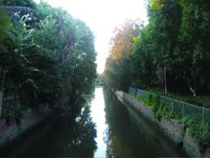 حافظ آباد: تیز رفتار کار بے قابو ہوکر نہر میں جا گری، 2 افراد ڈوب کر جاں بحق