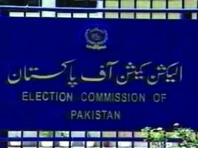 دوہری شہریت : منتخب نمائندوں سے نیا حلف نامہ لیا جائے گا' رحمن ملک اور 11 نااہل ارکان کے کیس قانونی کارروائی کیلئے سیشن ججوں کو بھجوا رہے ہیں: الیکشن کمشن