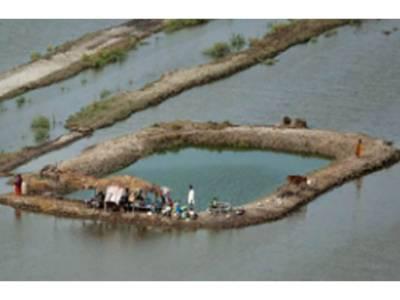 سیلاب سے پنجاب میں 512 دیہات متاثر، 42 لاکھ ایکڑ اراضی زیرآب آئی