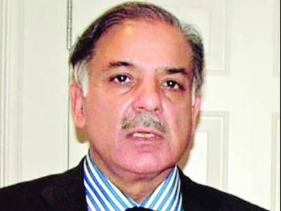 زرداری نے پنجاب حکومت گرانے کے لئے آئی بی سے 50 کروڑ کی ڈیل کی ' تحقیقات کی جائے: شہباز شریف