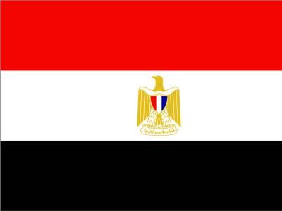 مصر : مسلح افراد کی تحریر سکوائر میں مظاہرین پر فائرنگ، 2 زخمی