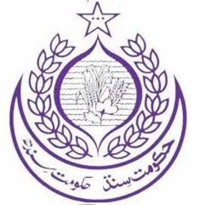 سندھ کی نگران کابینہ میں توسیع'مزید 3 وزراءنے حلف اٹھا لیا، تعداد 19 ہو گئی