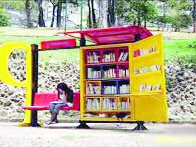 کتب بینی کا شعور اجاگر کرنے کیلئے لکڑی کی ننھی لائبریریاں قائم