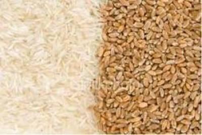 دس ماہ کے دوران غذائی اجناس کی درآمدات میں 12.83 فیصد کمی