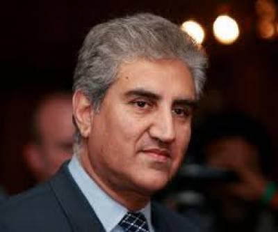 شاہ محمود کو ڈپٹی پارلیمانی لیڈرمقرر کرنا قیادت کا جاوید ہاشمی پر عدم اعتماد کا اظہار ہے