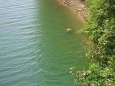 لڑکا نہاتے ہوئے راوی میں ڈوب گیا