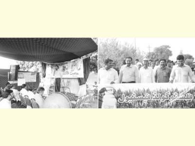 تحفظ زرعی فرنچائز نیٹ ورک کے زیر اہتمام فلسٹوگولڈ میلہ