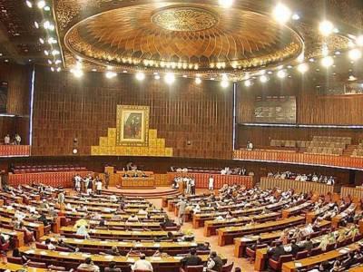 قومی اسمبلی: پٹرولیم مصنوعات کی قیمتوں میں کمی' لوڈشیڈنگ' جعلی سموں پر قابو پانے کی قراردادیں متفقہ منظور