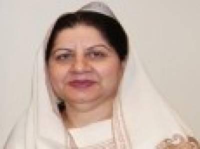 خیبر پی کے میں عمران خان کی حکومت چھ ماہ میں مکمل ناکام ہوچکی ہے: ثمینہ گھرکی