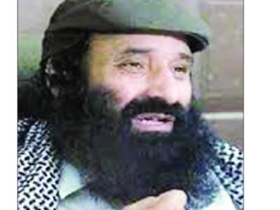 جہاد کشمیر کی آزادی کا واحد حل ہے' پاکستان نے بھارت کو فیورٹ نیشن قرار دینا ہے تو کشمیریوں کی وکالت چھوڑ دے: صلاح الدین