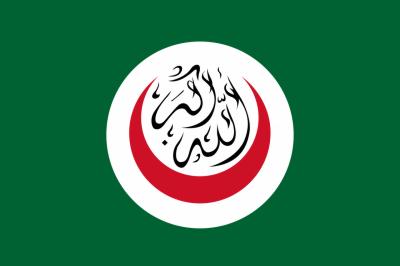 اسرائیلی جارحیت پر کچھ نہیں کرسکے، سربراہ اجلاس پاکستان میں ہوگا: سیکرٹری جنرل او آئی سی