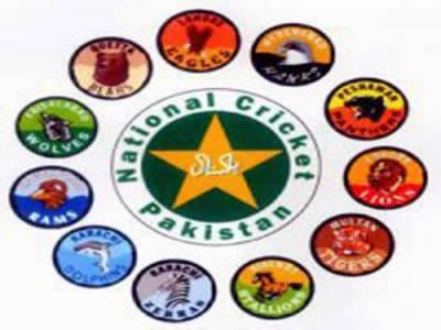 قومی ٹی ٹونٹی ٹورنامنٹ: پشاور پینتھرز اور لاہور لائنز کی ٹیمیں فائنل میں پہنچ گئیں