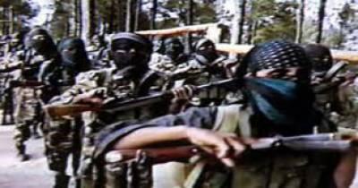 فلپائن:ابوسیاب جنگجوﺅں کے ساتھ جھڑپ میں پانچ اہلکار، 14 باغی ہلاک، 26 زخمی