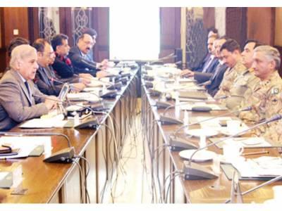 نئی نسل کو پرامن اور محفوظ پاکستان دینے کی ذمہ داری نبھائیں گے: شہباز شریف