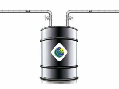 """""""ملک میں ایک لاکھ میٹرک ٹن پٹرول کا ذخیرہ موجود ہے"""""""