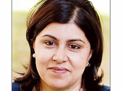 چند برس قبل کئے فیصلوں کے نتائج پاکستان آج بھگت رہا ہے: سعیدہ وارثی