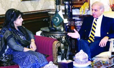 سمندر پار پاکستانی ہمارے سفیر ہیں' اوورسیز کمشن شکایات کے ازالے کیلئے مؤثر اقدامات کریگا: شہباز شریف