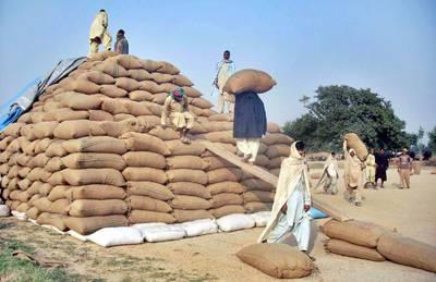 حکومت کی کسان دوست پالیسی لاہور میں باردانہ کا اجرال کل سے ہو گا