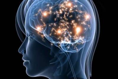 کتب بینی دماغ کو جوان رکھتی ہے: امریکی یونیورسٹی میں تحقیق