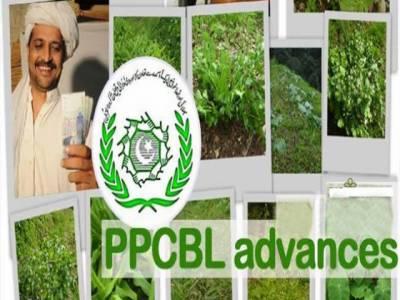 پنجاب پراونشل کوآپریٹو بنک نے لاہور جمخانہ کو 5 وکٹوں سے شکست دیدی