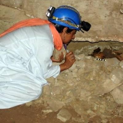 مصر میں کھدائی کے دوران تاریخی مندر سے 80 لاکھ کتوں کی ''ممیاں'' برآمد