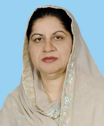 پاکستان میں جمہوریت بھٹو خاندان کی قربانیوں کی مرہون منت ہے: ثمینہ خالد گھرکی