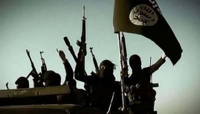 داعش کے جنگجو کوبانی شہر میں دوبارہ داخل' شدید لڑائی جاری' 35 افراد ہلاک