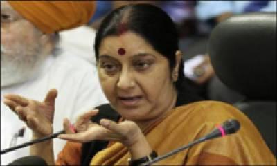 پاکستان میں ہندوﺅں، دیگر اقلیتوں سے امتیازی سلوک ہو رہا ہے، اگلی میٹنگ میں مسئلہ اٹھائینگے، بھارتی وزیر خارجہ کی ہرزہ سرائی