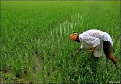مطالبات پورے نہ ہونے پر کسان راج تحریک کا کل گوجرانوالہ میں مظاہرے کا اعلان