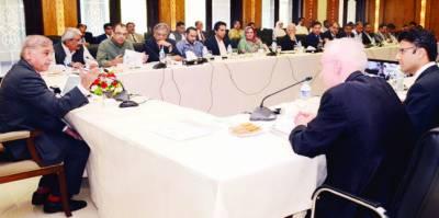 شہباز شریف محکمہ صحت کی کارکردگی پر برہم' 4 ای ڈی اوز ہیلتھ معطل