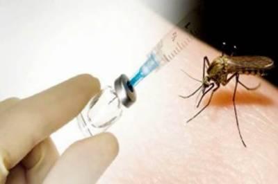 میکسیکو ڈینگی بخار کے خلاف ویکسین کی منظوری دینے والا پہلا ملک بن گیا