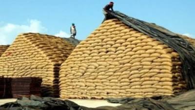 گندم خریداری پالیسی کاشتکاروں کی مشاورت سے بنائی جائیگی: بلال یاسین