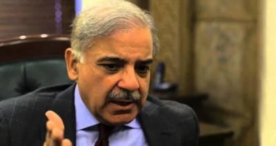 دھرنا سیاست نے ترقی میں رکاوٹ ڈالی' ملک احتجاج کا متحمل نہیں ہو سکتا : شہباز شریف