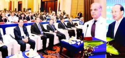چین ہمیشہ پاکستان کے ساتھ کھڑا رہا، توانائی کے شعبے میں تعاون فراموش نہیں کر سکتے: شہباز شریف