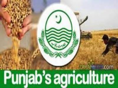 ناقص کارکردگی پر محکمہ زراعت کا افسر معطل