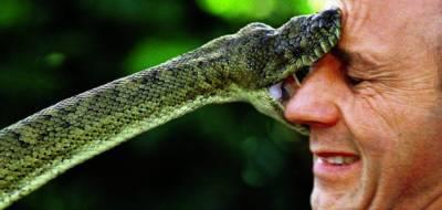 جلالپور جٹاں: سانپ کیساتھ سیلفی بنانے کا انجام ' ڈسے جانے سے معمر شخص جاں بحق