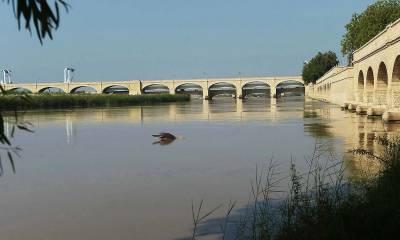 سکھر: اہلیہ کے ہمراہ پل پر سیلفی لینے والا شخص دریائے سندھ میں گر گیا