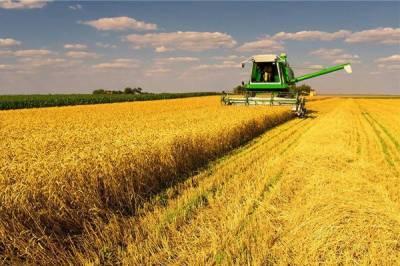 کاشتکارکپاس کی کاشت فوری مکمل کریں، ترجمان محکمہ زراعت