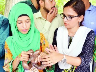 لاہور چڑیا گھر میں سانپوں کا عالمی دن منایا گیا