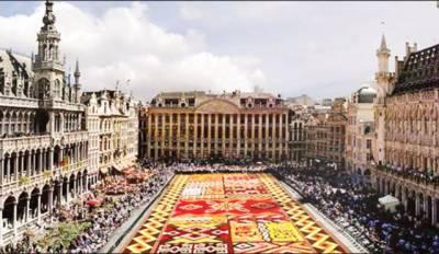 برسلز ، ایک لاکھ بوگن ویلیا کے پھولوں سے تیار کردہ قالین