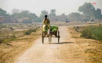 دیہی علاقوں میں ترقیاتی منصوبوں اور صاف دیہات پروگرام کا روڈمیپ جاری