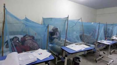 راولپنڈی کے الائیڈ ہسپتالوں میں ڈینگی کے مریضوں کی تعداد 278 ہوگئی
