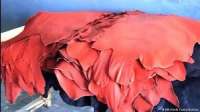 چمڑے کی ویلیو ایڈڈ صنعت کی ترقی کیلئے خام مال کی برآمد کم کی جائے:میاں زاہد