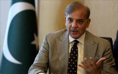 جھوٹ کی سیاست کرنے والے ہوش کے ناخن لیں ، پاکستان ہمارا ، ملکر اسے سنورانا ہے : شہباز شریف
