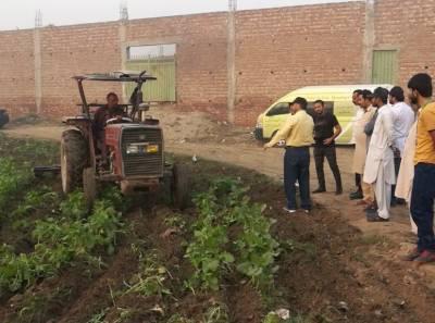پنجاب فوڈ اتھارٹی نے زہریلے پانی سے اگنے والی 2524 کنال سبزیاں ہل چلا کر تلف کر دیں