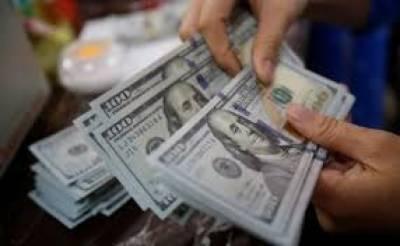 ڈالر کی انٹر بنک قیمت110.64 روپے ہو گئی' ایل پی جی10 ' برائلر9 روپے کلو مہنگا