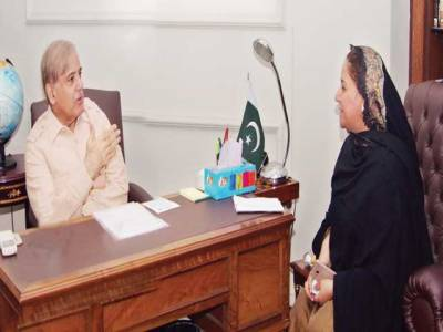 نیازی صاحب نے سب سے بڑی بیماری کو گلے لگا کر عوام کو مایوس کیا: شہباز شریف