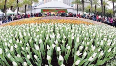 ہانگ کانگ میں ہر سو پھولوں کی بہار چھا گئی