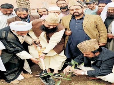 ملک میں شجر کاری مہم خوشحالی اور ترقی کی نوید ہے:مولانا سید عبد الخبیر