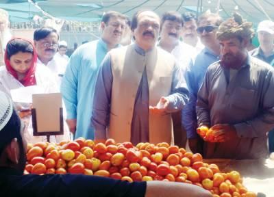 رمضان میں پھلوں سبزیوں کی سپلائی متاثر نہیں ہونے دیں گے: اکرم چودھری